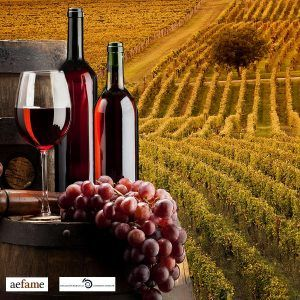 acercate-a-La-Rioja